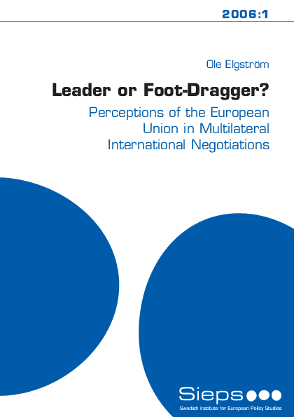 the european union in international commercial negotiations essay The purpose of the present communication is to provide the european withdrawal-european-union_en throughout the negotiations international partners.