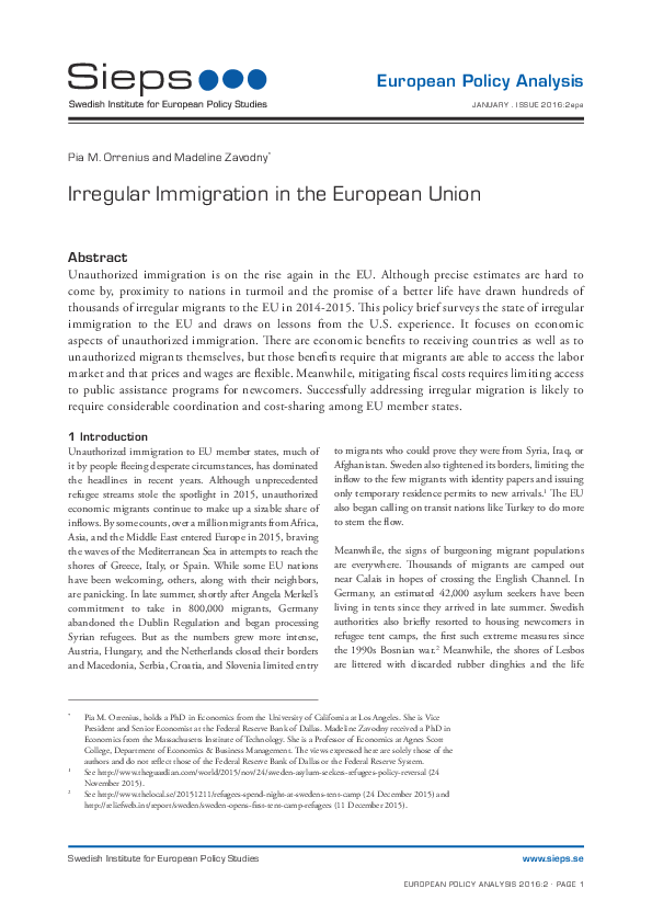 Irregular Immigration in the European Union